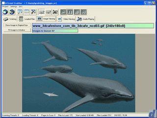 Automatischer Download aller Dateien eines bestimmten Typs von Webseiten