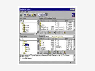 Dieser FTP Client hat eine viergeteilte Fenster Oberfläche.