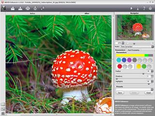 Das Plugin ermöglicht es, Details eines Fotos hervorzuheben.
