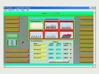 Dokumentation und Analyse der Blutzuckerwerte für Diabetiker