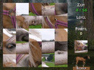 Vier verschiedene Pferdepuzzle die auf Zeit gespielt werden.