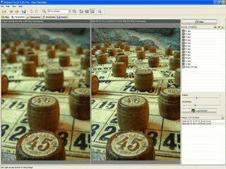 Software für die Aufbereitung von extremen Makro-Fotografien