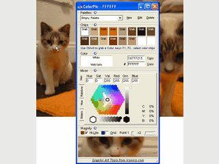 ColorPicker mit Bildvergrößerung und Speicherung von Farbpaletten