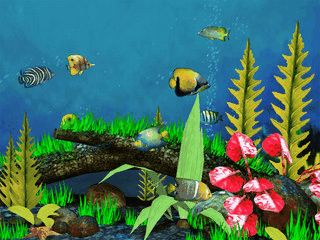 Bunte Fische schwimmen wahlweise auf Ihrem Desktop oder im Aquarium