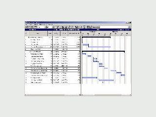 Viewer für MS Project und SAP PS Dateien