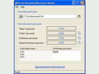 MS Excel Password Recovery Tool mit Hilfe eines Online-Service.