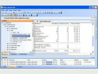 Schutz für .Net Anwendung gegen Reverse-Engineering.