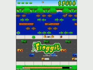 Der Spieleklassiker Frogger in einer Flash-Umsetzung.