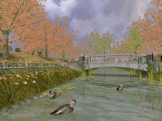 Stimmungsvolle Szenen aus einem Park im Herbst.