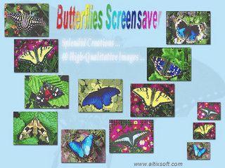 Slideshow-Bildschirmschoner mit 40 Bildern von Schmetterlingen.