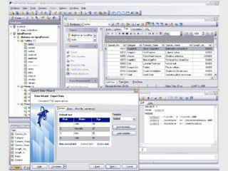 Umfangreiches Werkzeug zur Administration eines MySQL Server.