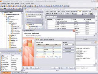 Grafisches Frontend für die Verwaltung von MS SQL Server und Datenbanken
