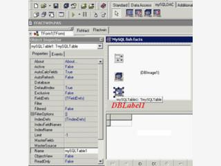 Delphi und C++Builder Komponenten für den Zufriff auf MySQL Datenbanken.