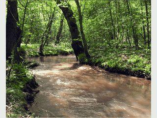 Ein endloses HD Video von einer Flusslandschaft.