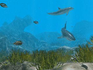 Arid Ocean ist eine realistische Unterwassersimulation