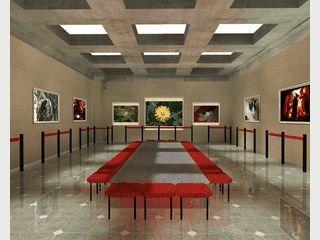 Ihre eigenen Bilder in virtuellen 3D Gallerien als Wandgemälde.