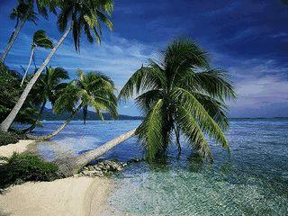 Slideshow mit Bildern von tropischen Inseln schonen den Bildschirm.