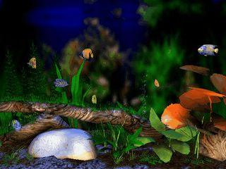 In einem virtuellen Raum steht ein animiertes Aquarium.