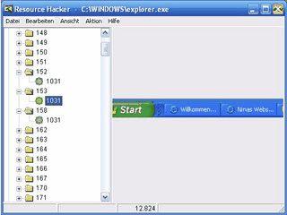 Verhindert die Decompilierung von .Net Anwendungen.