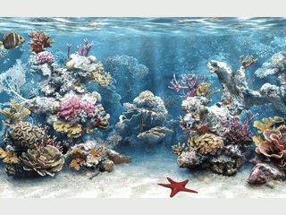 Realistisches 3D Aquarium als Bildschirmschoner.