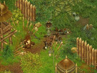 Einzelspieler Rollenspiel mit strategischen Elementen.