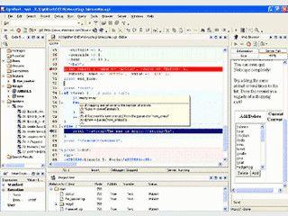 Visuelle Entwicklungsumgebung für die Programmierung von Perl-Scripts