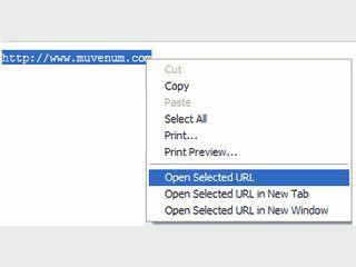 Praktische Erweiterung für den Internet Explorer zum Aufruf von WebUrls.