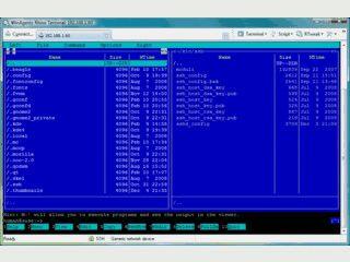 Terminal-Client für Verbindungen zu Servern und Netzwerkgeräten.