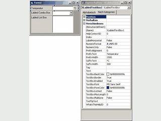 Beschriftete Steuerelemente für Visual Basic 6