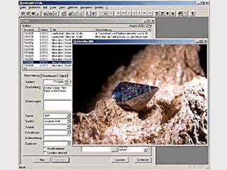 Bildverwaltung für digitale Fotos und Dias.
