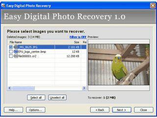 Haben Sie Ihre Fotos versehentlich gelöscht? Sie können sie wiederherstellen.