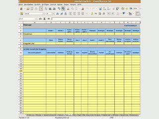 Einfaches Haushaltsbuch für MS Excel oder Open Office.