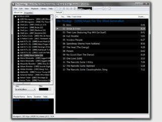 Guter Audioplayer für die gängisten Formate mit vielen Erweiterungen.