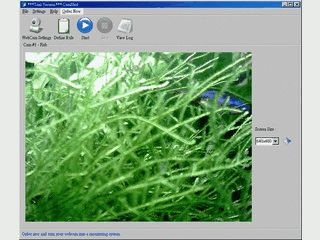 Verwandelt Ihre Webcam in eine Überwachungskamera.