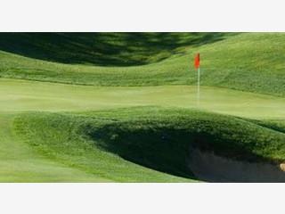 Software mit der Sie ein Golfturnier abwickeln können.