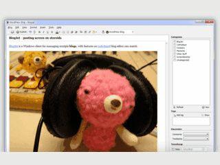 Windows Client für WordPress, TypePad, Blogger, Drupal und weitere Dienste.