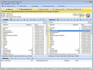 FTP-Client mit Filterfunktionen für die Dateiauswahl.