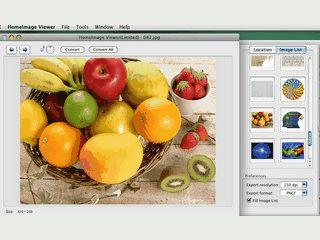 Bildbetrachter mit Konvertierfunktionen und Bildbrowser.