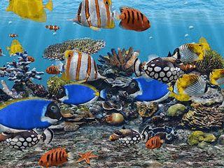 Verwandelt Ihre PC während der Arbeitspausen in ein Aquarium.