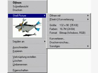Bietet die Möglichkeit, Bilder direkt im Windows Explorer zu betrachten.