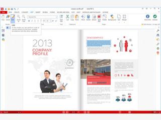 PDF-Komplettlösung inklusive Scannerschnittstelle zum Erfassen von Dokumenten