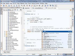 PHP-Entwicklungsumbegung mit Unterstützung für Javascript und HTML 5