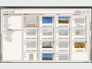 Software zur Bildverwaltung und -archivierung.