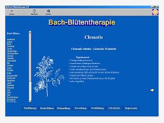 Umfassende Einführung in die Bach-Blütentherapie