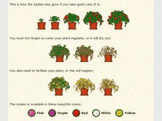 Desktop Plant ist ein virtueller Blumentopf für Ihren Desktop.