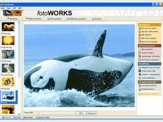Bildbearbeitungssoftware speziell für Ihre Digitalkamera-Bilder